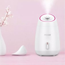 Electric Facial Steamer